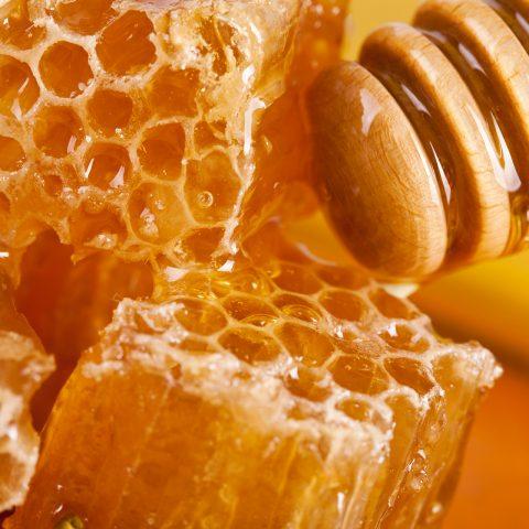 vonderweid-produzione-miele-del-carso-trieste
